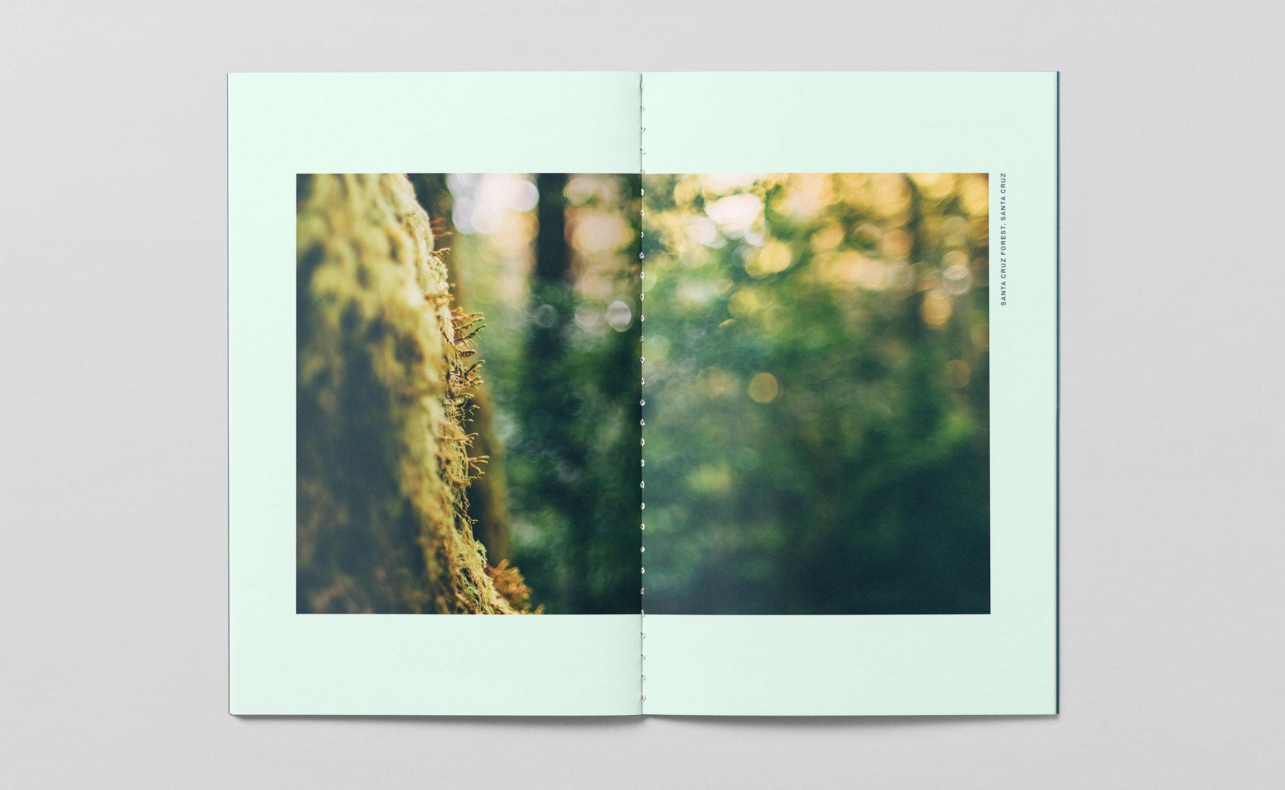 bpf_brochure-spread-1_2730x1680