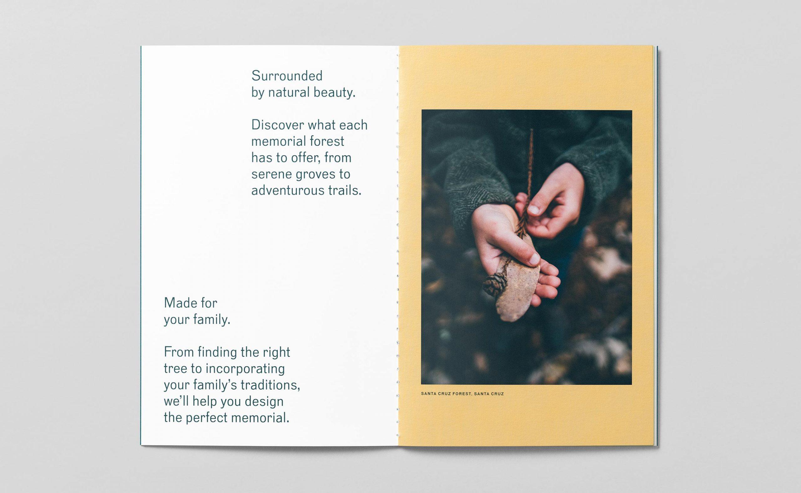 bpf_brochure-spread-2_2730x1680