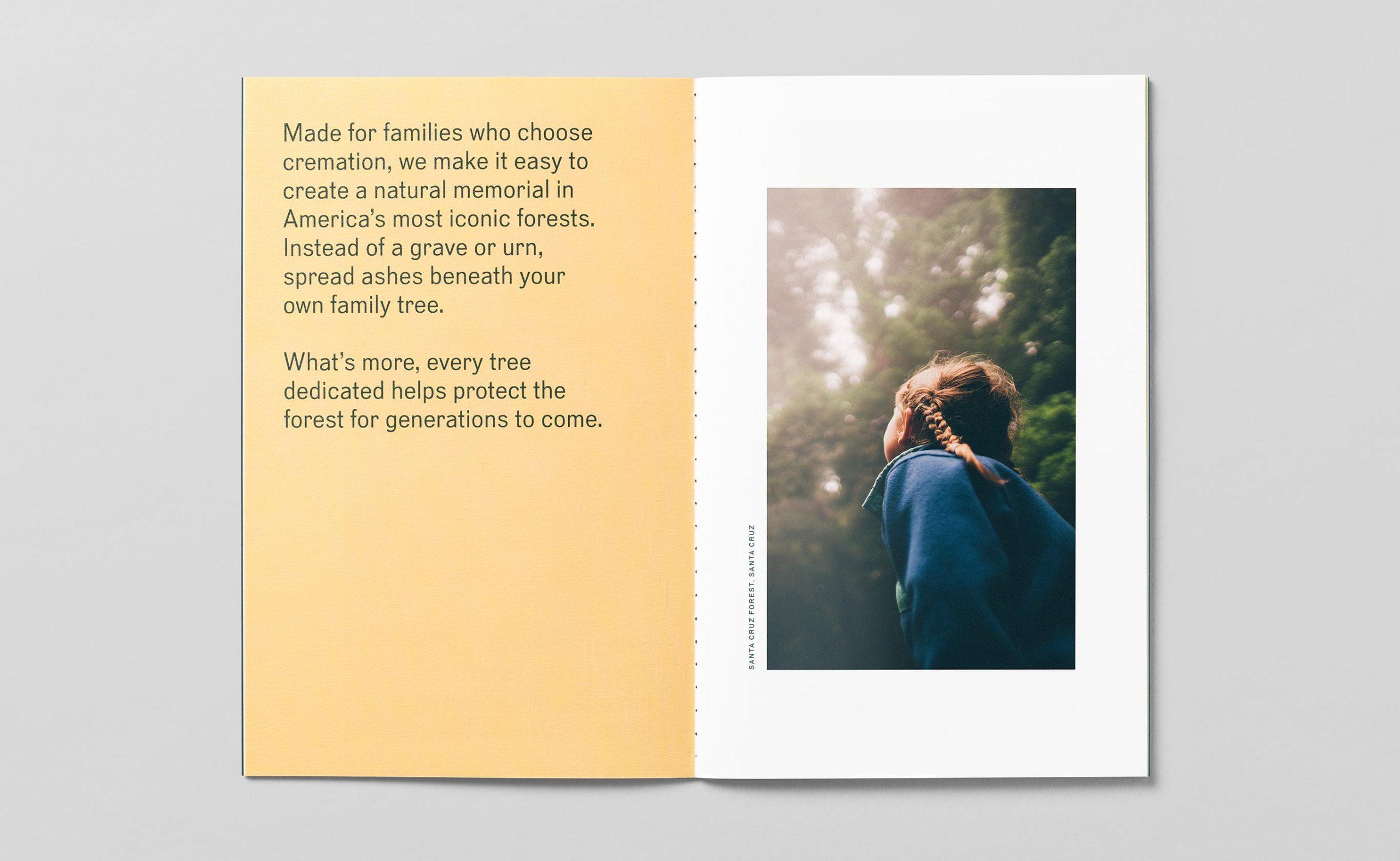 bpf_brochure-spread-3_2730x1680