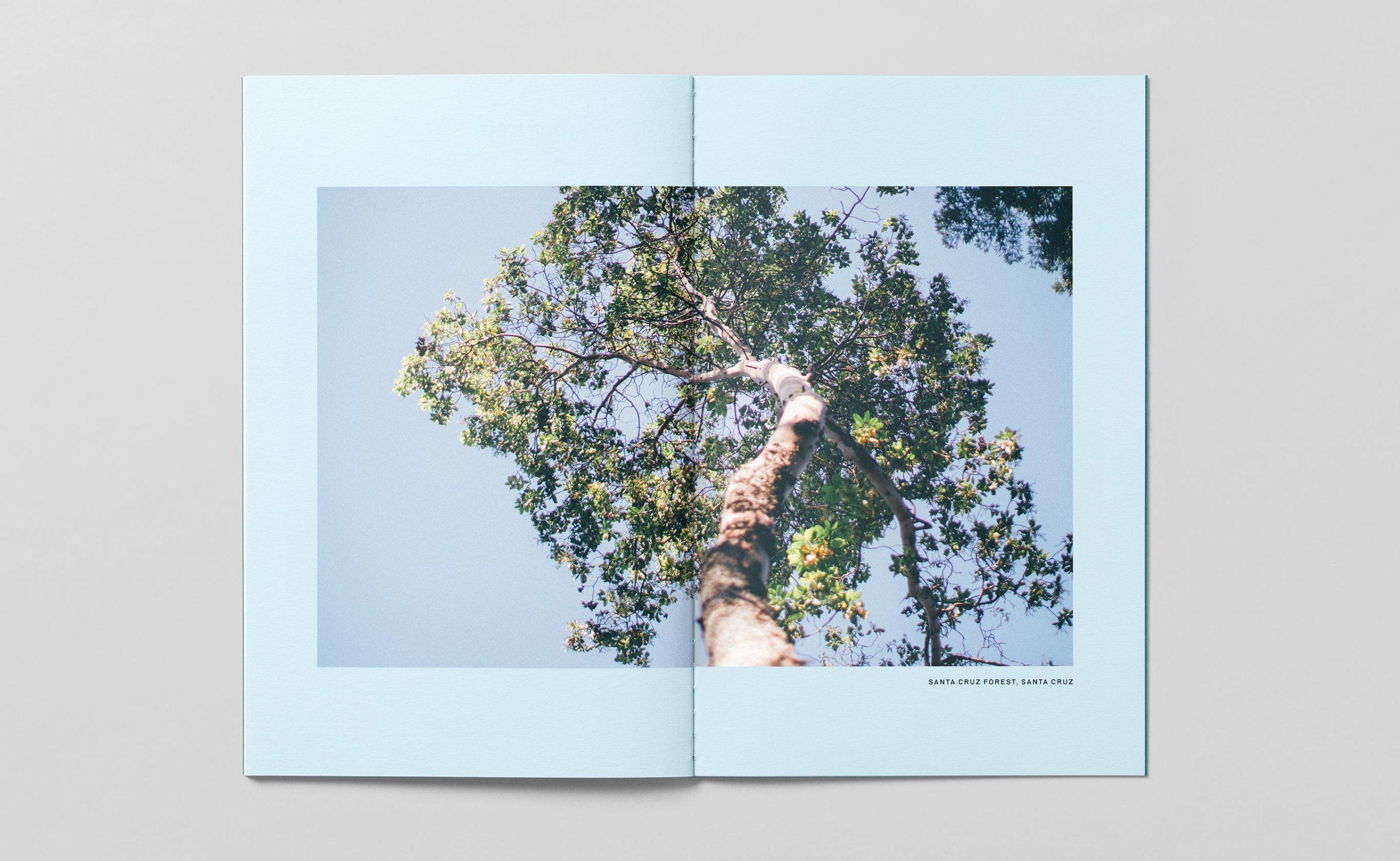 bpf_brochure-spread-5_2730x1680